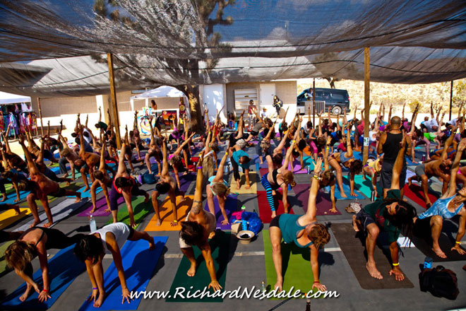 Bhakti Fest at Joshua Tree, CA, 2014Photo: Richard Nesdale