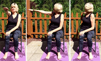 Seated Twists