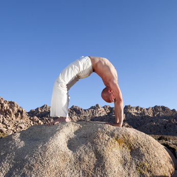 Urdhva dhanurasana (Upward Bow Pose)