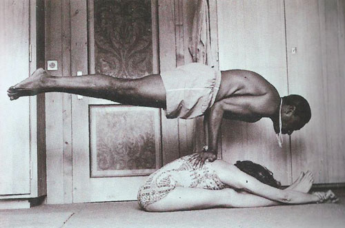 Mayurasana Peacock Pose Its History Purpose And Method Bahiranga Com