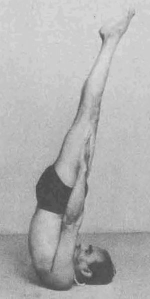 Figure 3.  Niralamba Sarvangasana from B. K. S. Iyengar, Light on Yoga, 1966.